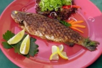 pestrá nabídka čerstvých ryb